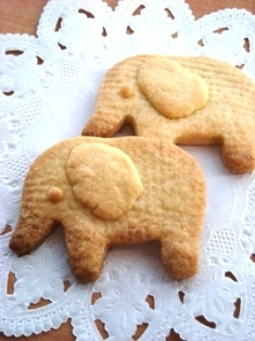 elefant cookie