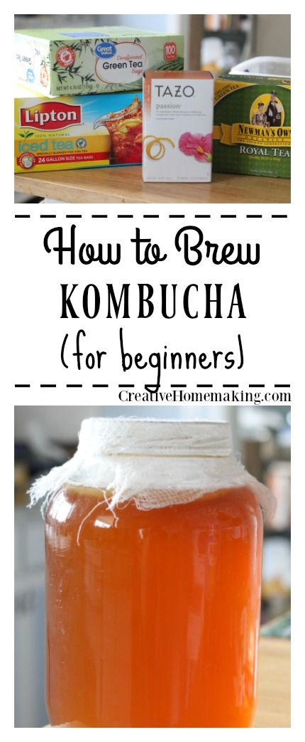 Kombucha recipe for beginners | easy recipe for brewing kombucha at home.