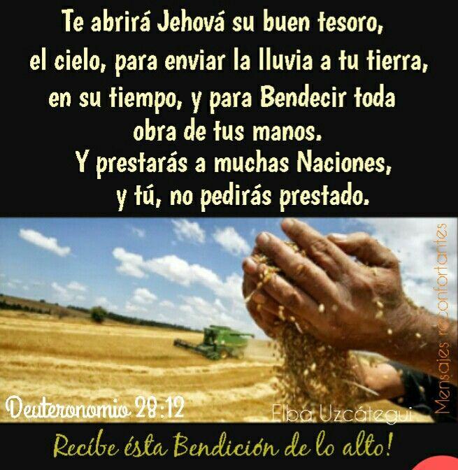 Te abrirá Jehová su buen tesoro, el cielo, para enviar la lluvia a tu tierra en su tiempo, y para bendecir toda obra de tus manos. Y prestarás a muchas naciones, y tú no pedirás prestado. Deuteronomio 28:12 Gracias Señor! Por tantas Bendiciones 🙏🏼👣🌹
