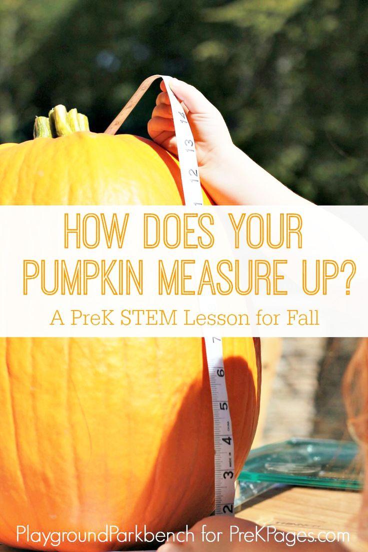Pumpkin stems for crafts - How Does Your Pumpkin Measure Up Fun Pumpkin Stem Measurement Activity For Preschool Or Kindergarten