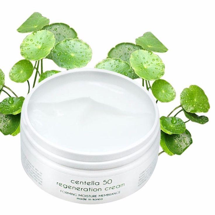 Centellasca 50 Regeneration Big Size Moisturizing Nourishing Wrinkle Care Cream #Graymelin