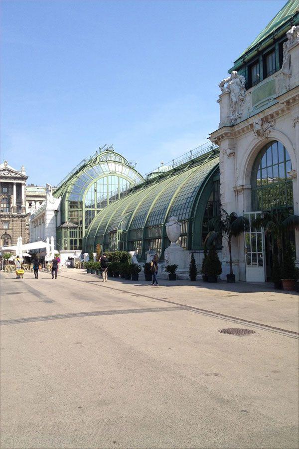 Schmetterlinghaus im Palmenhaus Burggarten Hofburg - Vienna/Wien, Austria/Österreich