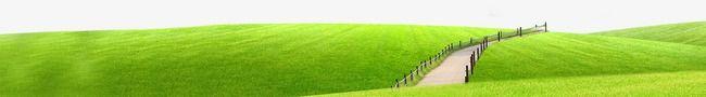 grass,green,road
