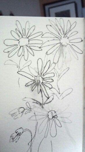 Sketch of daisies #pen