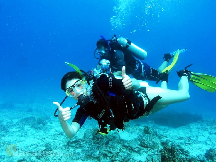 Great Tips on Scuba Diving Trips