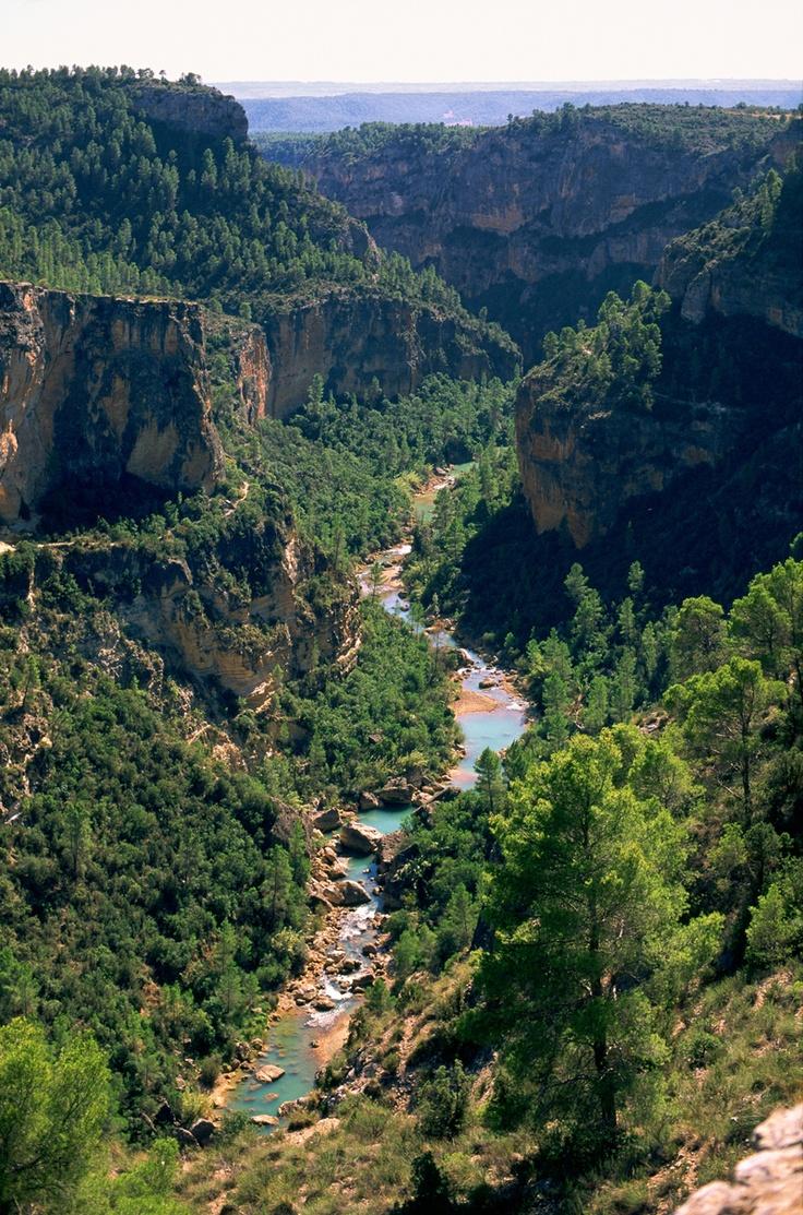 Castilla la Mancha (Cuenca): Parque natural Hoces del río Cabriel. --- Castille la Manche (Cuenca): Parc Naturel Hoces de la rivière Cabriel.