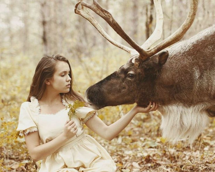 Best Girls Bears Images On Pinterest Beautiful Clothes And - Russian photographer takes enchanting fairytale photos featuring wild animals