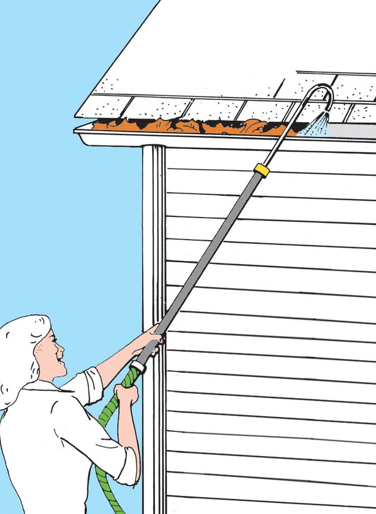 Flush Dirt Dead Leaves And Branches Out Of Your Gutters