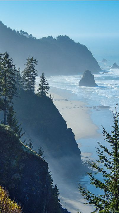 Light fog at Boardman State Park on the Southern Oregon coast by Larry Andreasen
