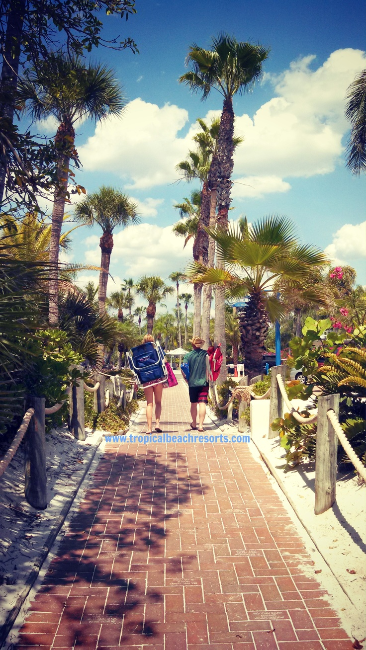36 Best Images About Activities To Do On Siesta Key On