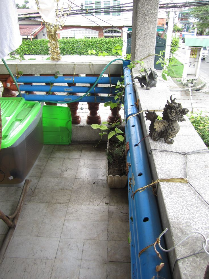 17 best images about aquaponics in the philippines on for Balcony aquaponics