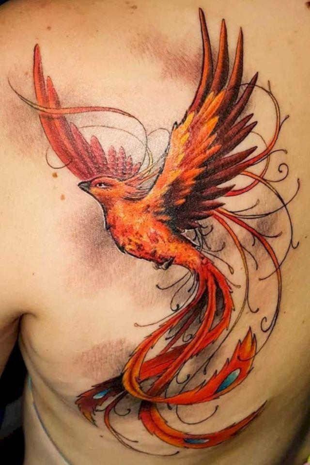 54 Stunning Tattoo Ideas For Women Phoenix Bird Tattoos Bird Tattoo Men Phoenix Tattoo