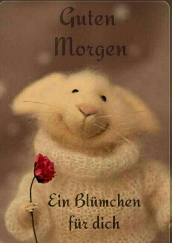 Pin Von Irmayanti Auf Wishing Cards Guten Morgen Lustig