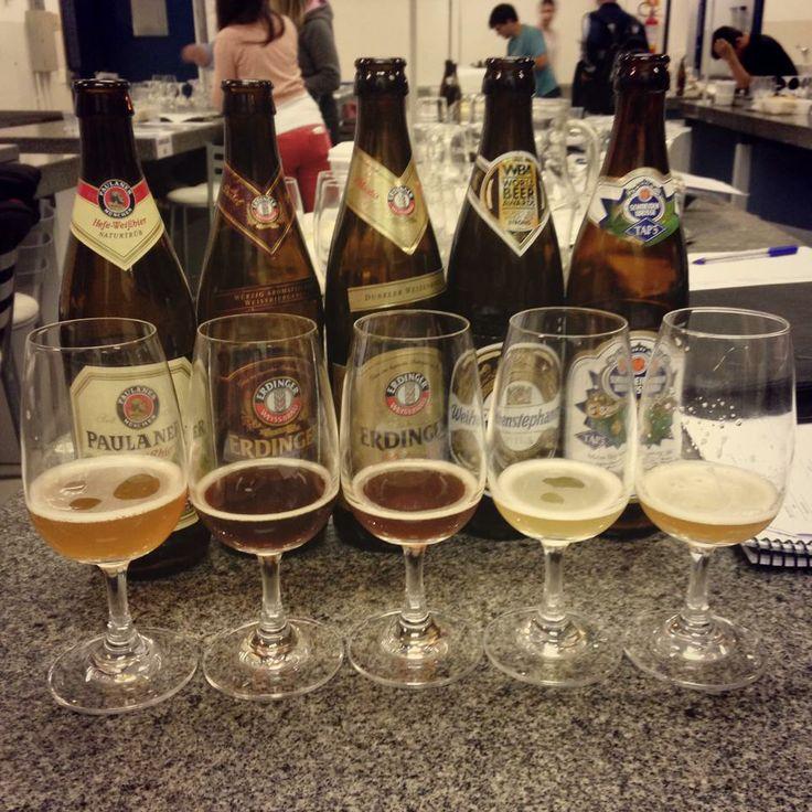Segunda aula da 3ª turma do curso de Sommelier de Cervejas da Universidade Positivo / Mestre-Cervejeiro.com  Cervejas de trigo alemãs: Weissbier, Dunkelweizen, Weizenbock e Hopfenweisse. Prost!  #mc10anos #cerveja #beer #cervejaartesanal #craftbeer