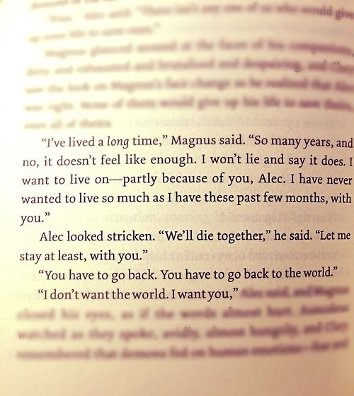 Magnus Bane and Alec Lightwood, City of Heavenly Fire