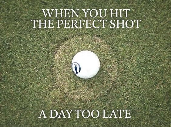 Golf Quotes Cool 2272 Best Golf Humor Images On Pinterest  Golf Humor Rock Bottom