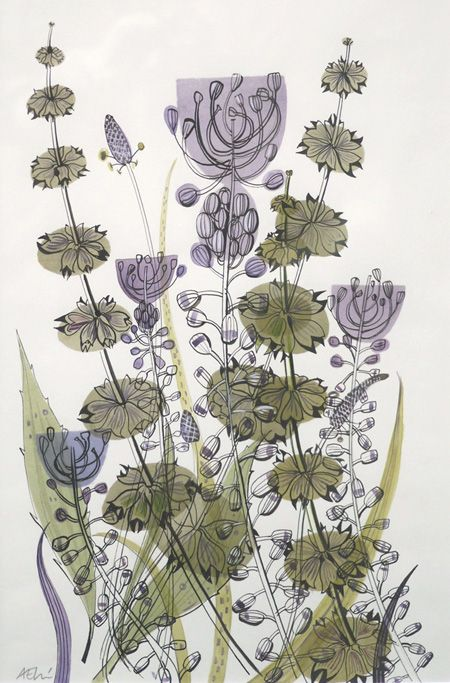 'Tassel Hyacinth', watercolour, drawing, Angie Lewin, nature, design, pattern, illustration, colour, flowers