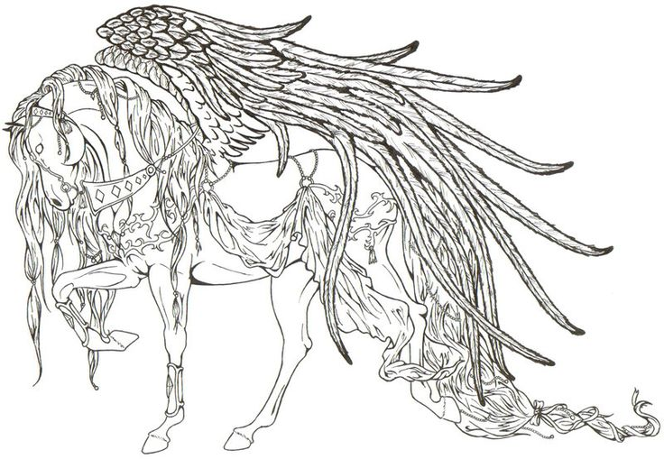 horse anatomy coloring pages - photo#39