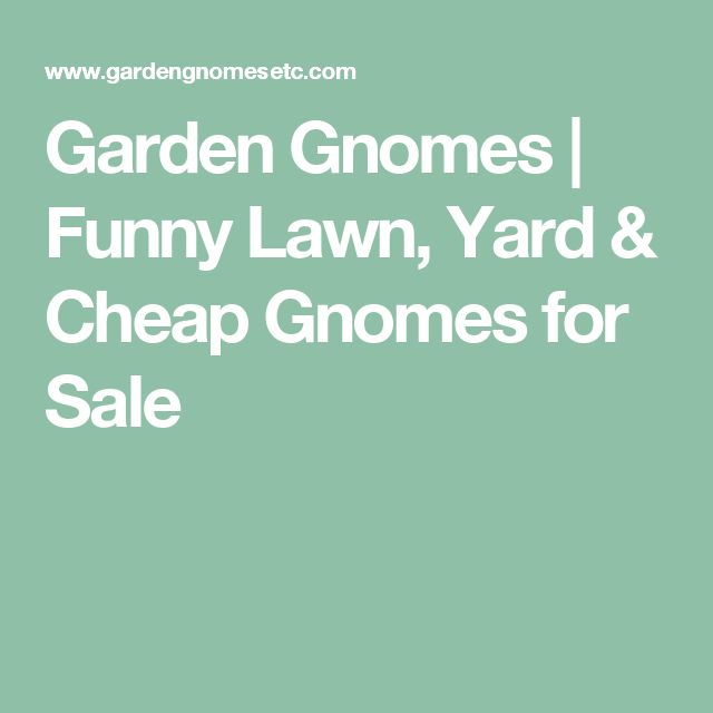 Garden Gnomes | Funny Lawn, Yard & Cheap Gnomes for Sale