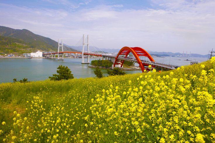 대한민국 최고의 관광명물로 탄생한 창선·삼천포대교는 길이 3.4km로 삼천포와 창선도 사이 3개의 섬을 연결하는 5개의 교량으로 전국에서 유일하게 해상국도(국도3호)로 남아있는 세계적으로 보기드문 관광명소입니다. The Changseon-Samcheonpo grand Bridge, which became Korea´s top tourist attraction established in April 28, 2003, is 3.4km long bridge, which connected 3 islands by 5 bridges between Changseon Island and Samcheonpo in Namhae. All five bridges present unique characteristics as it were made of different construction methods.