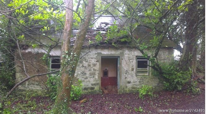 Ballynahone, Mullan, Emyvale, Monaghan - this is the gate house at the house where i grew up