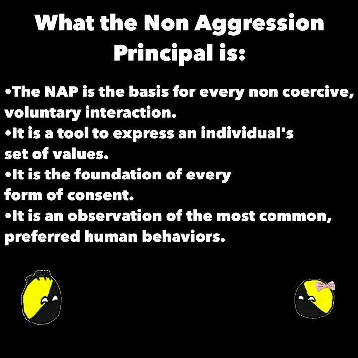 Non Aggression Principle