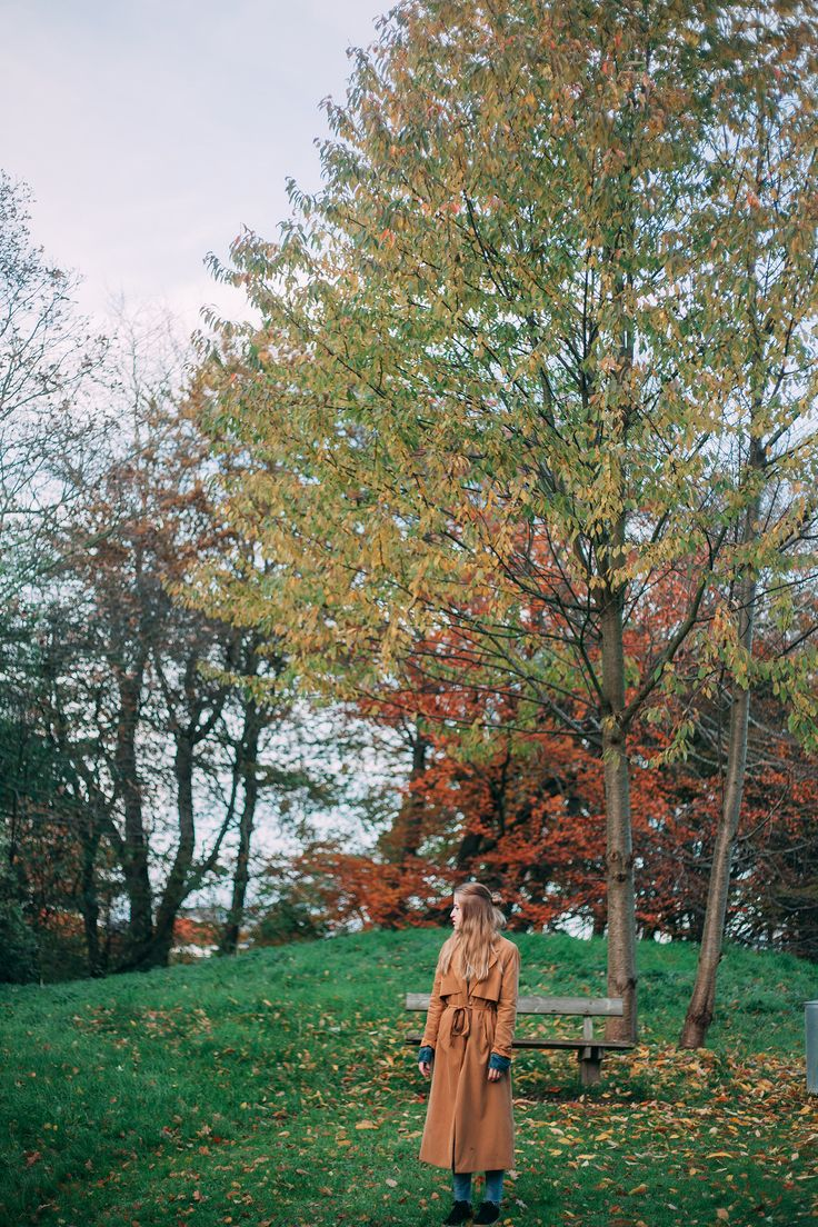 #trenchcoat #camelcoat #denim #sneakers #fall #autumn #photography #nature