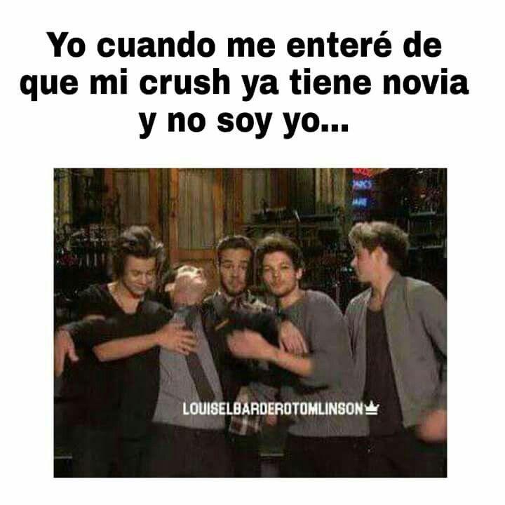 Pin De Bea Aguilon En M E M E S D E 1 D Memes De One Direction Memes Memes De Crush