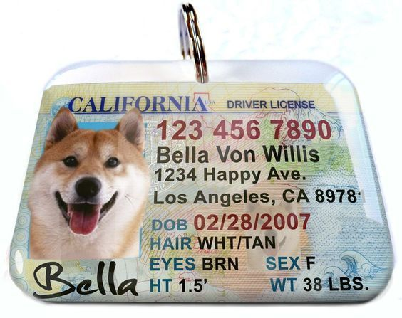 New California Driver License Pet Identification Tag for Cats or Dogs by ID4Pet >>> Continue to the product at the image link.