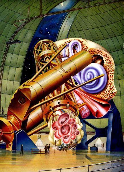 Telescopic Ear