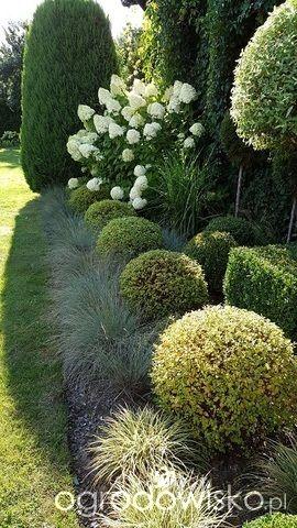 Atelier Ogrodowe... - strona 63 - Forum ogrodnicze - Ogrodowisko