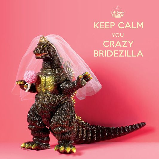Bridezilla…the word just conjures up all kinds of negative emotions.  No bride wants to be called a bridezilla especially by her family and friends.  As a woman, I find it to be a hurtful name.  I believe most women would not want their family and friends to call them such a negative name.  So how …