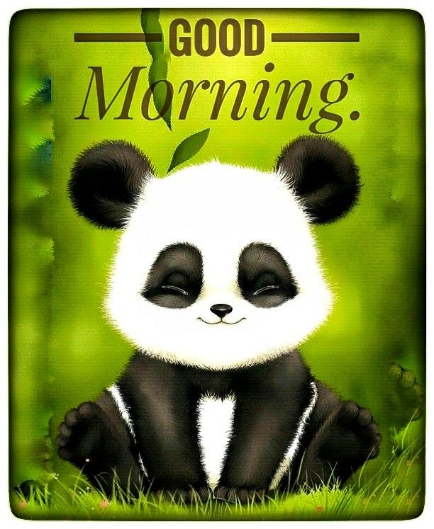 Good Morning Greeting For A Panda Lover Good Morning Cartoon Good Morning Animation Good Morning Snoopy