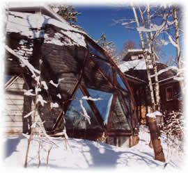 8 Best Dome Home Skylights Calgary Skylights Images On