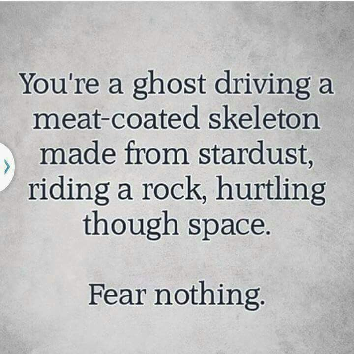 You're a ghost driving a meat coated skeleton made from stardust, riding a rock, hurtling through space. Fear nothing