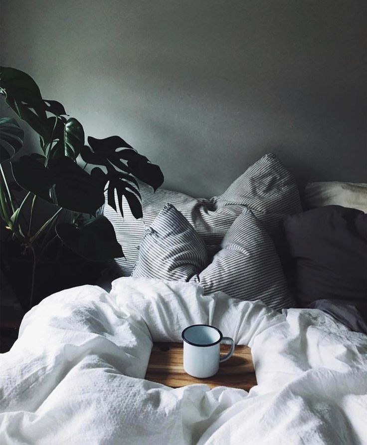 """2,359 Likes, 16 Comments - Travel, Adventure, And Explore (@dyerandjenkins) on Instagram: """"Breakfast in bed. @earlymorningheart #forgeyourownpath"""""""
