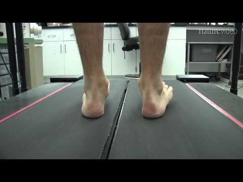 Harvard professor Daniel Lieberman's study on running technique.