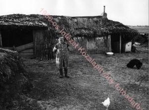 1978, [Magyarország] Ürmös-hát, Balmazújváros mellett ilku jános felvételete (ez a jo kersztneve