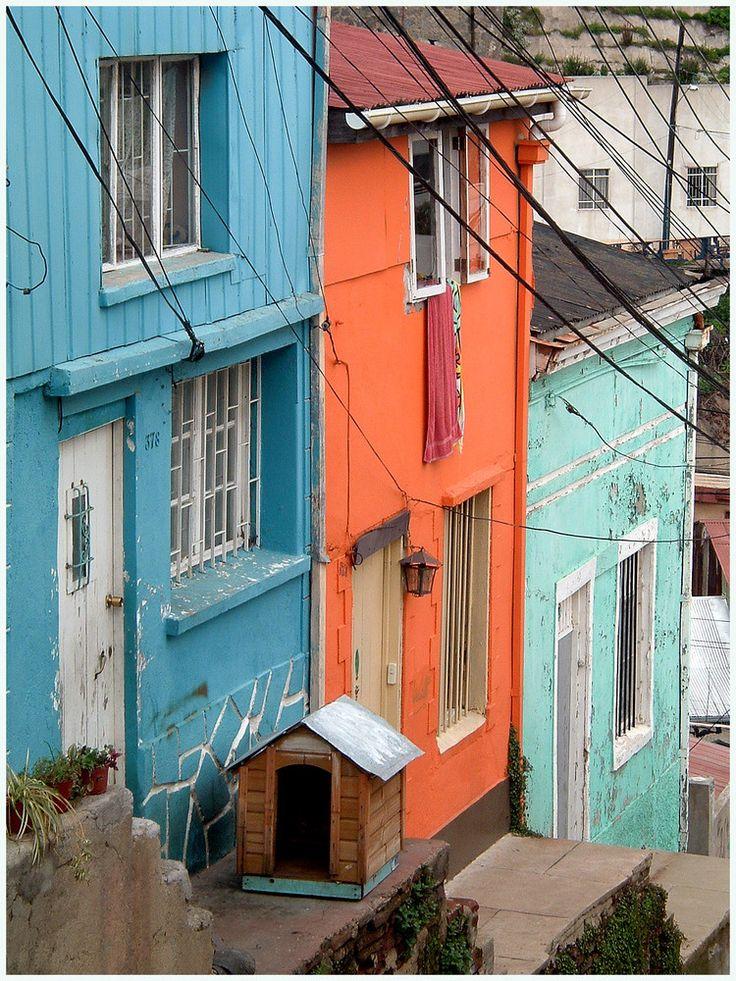✿⊱╮casas de Valparaíso.