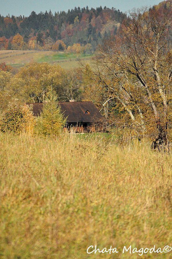 Chata Magoda: Cztery pory roku - jesień
