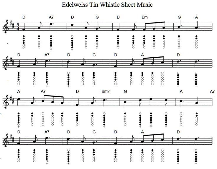 Mandolin u00bb Mandolin Tabs Wild Rover - Music Sheets, Tablature, Chords and Lyrics