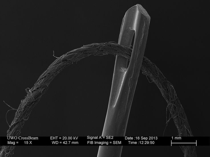 The needle and thread is one of those iconic SEM images. Kindly provided by Todd Simpson, UWO Nanofabrication Facility nanofab.uwo.ca/  For more information visit www.zeiss.com/fib-sem
