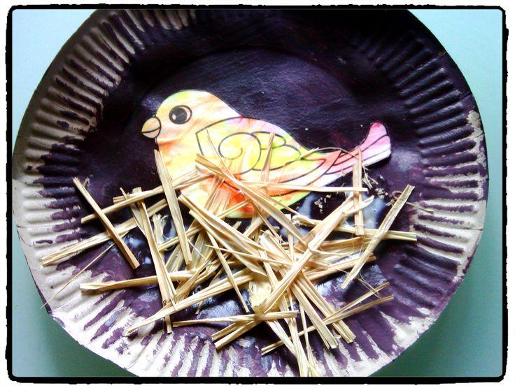 un petit nid d'oiseau avec une assiette en carton, bricolage de printemps pour enfant