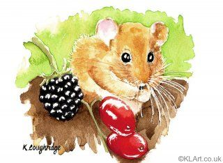 © KLArt.co.uk Hazel Dormouse