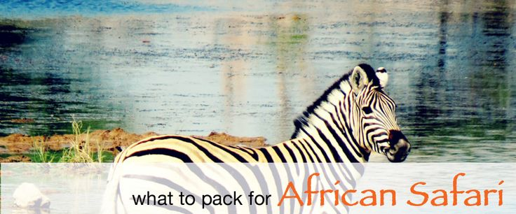 What to Pack for an African Safari   Packing List