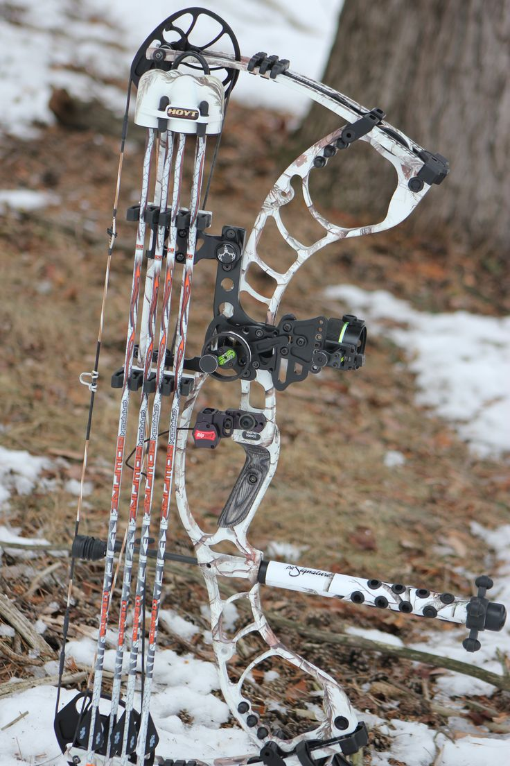 Hoyt Faktor 30, I would love to have either the faktor or the elite spirit as my new hunting bow. I already have a hoyt alpha max for my target and a Mathews craze for hunting however I don't really like my craze it doesn't feel as comfortable as the hoyt and elite fell in my hand.