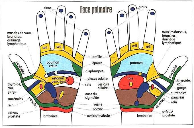 Éliminez votre douleur en appuyant sur des points de votre main ! • Mes échantillons Gratuits