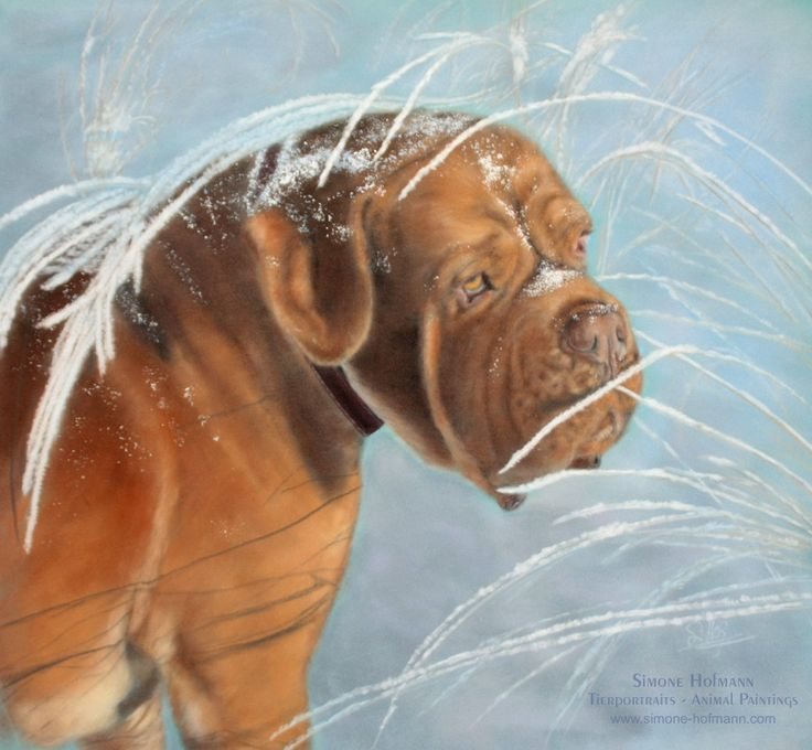 Tierportrait-Galerie: Hunde - Hundeportraits von Hundemalerin Simone Hofmann