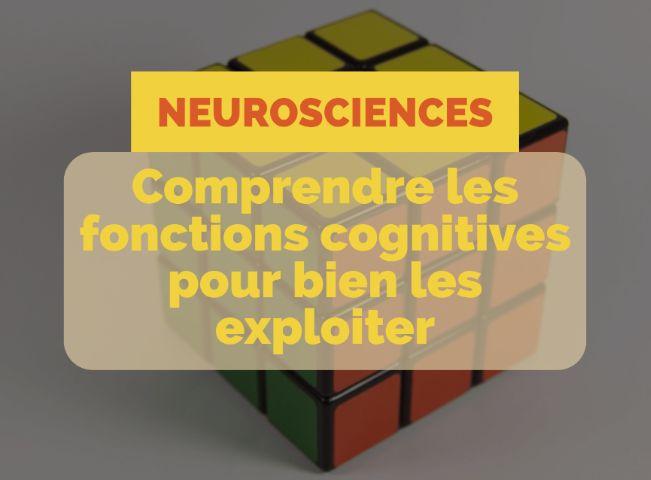 34 best cerveau images on Pinterest Neuroscience, The brain and
