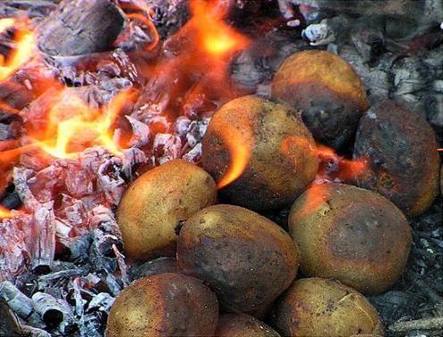 SOUND: http://www.ruspeach.com/en/news/8224/     Любители походов хорошо знают, что самая вкусная еда - это еда приготовленная на костре. Одно из таких блюд - это печеная картошка. Готовить это блюдо очень легко. Картошку нужно положить в горячие угли и золу как минимум после часа горен